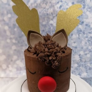 Reindeer Christmas Sponge Cake